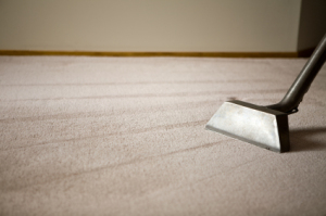 Misconceptions About Commercial Carpet Cleaning